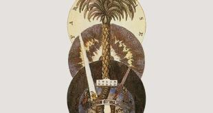 Knight of Cups photo 29