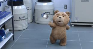 Ted 2 photo 24