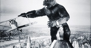 King Kong photo 7