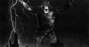 King Kong photo 16