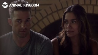 Animal Kingdom Teaser (2) VO